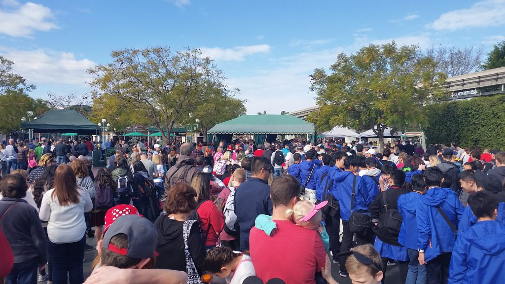 Security Line Crowd